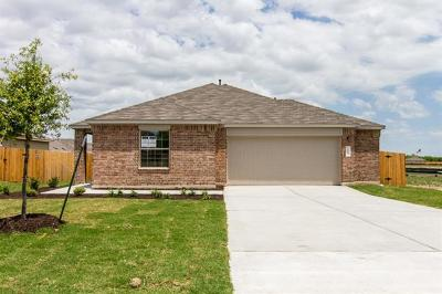 Kyle Single Family Home For Sale: 154 Florida Springs Dr