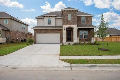 Pflugerville Single Family Home For Sale: 16712 Antioch Ave