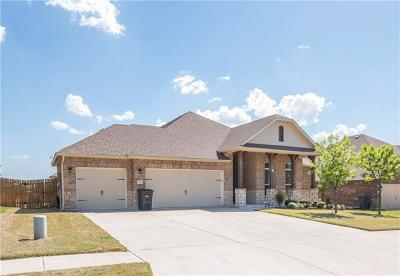 Killeen Single Family Home For Sale: 6106 Tanzanite Dr