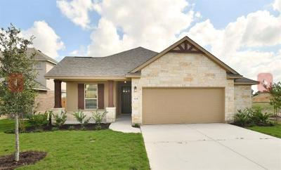 Round Rock Single Family Home For Sale: 825 Centerra Hills Cir