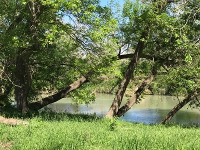 Farm For Sale: State Hwy 80