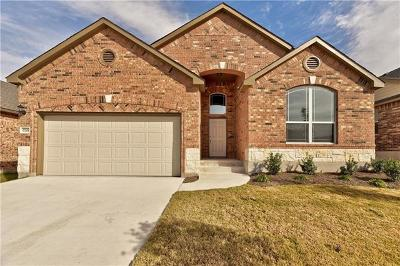 Pflugerville Single Family Home For Sale: 17208 Brittle Ln