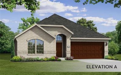 Buda Single Family Home For Sale: 880 Leadtree Loop