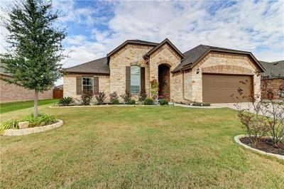 Leander Single Family Home For Sale: 2008 Cactus Mound Dr