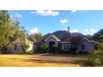 Travis County Single Family Home For Sale: 9303 Zyle Rd