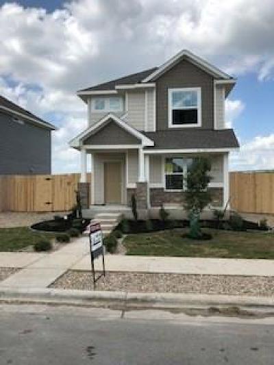 Single Family Home For Sale: 130 Frasier Dr