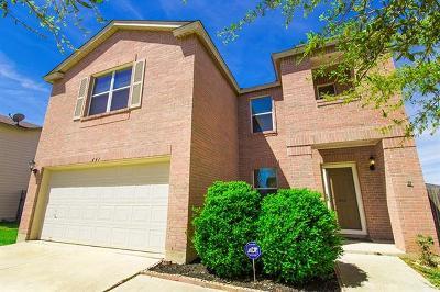 Kyle Single Family Home For Sale: 441 Holly Grove St