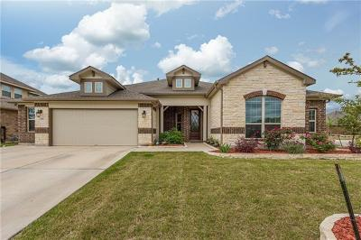 Hays County Single Family Home For Sale: 259 Summer Vista Dr