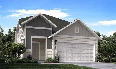 Austin Single Family Home For Sale: 11805 Cimaizon Drive