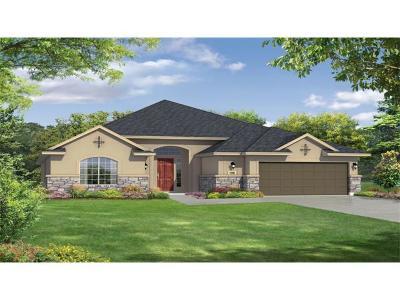 Austin Single Family Home For Sale: 162 Denise Cv