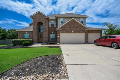 Pflugerville Single Family Home For Sale: 19900 Damrich Ct
