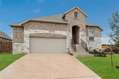 Hays County Single Family Home For Sale: 12545 Mesa Verde