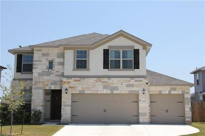 Pflugerville Single Family Home For Sale: 19217 Kimberlite Dr