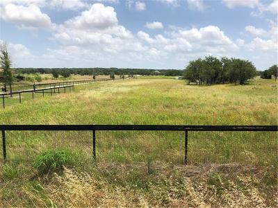 Georgetown Residential Lots & Land For Sale: 1610 County Rd 245