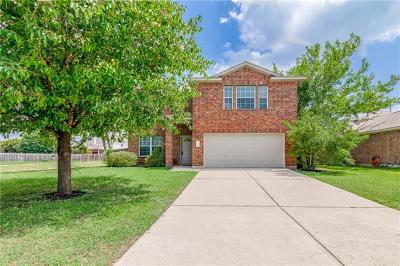 Kyle Single Family Home For Sale: 301 Primrose Blvd