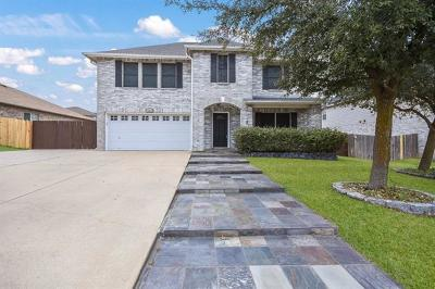 Round Rock Single Family Home For Sale: 19612 San Chisolm Dr