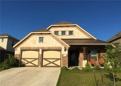 Buda Single Family Home For Sale: 370 Vista Garden Dr