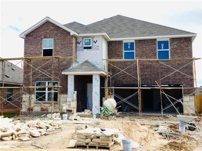 Manor Single Family Home For Sale: 12201 Texana Trl