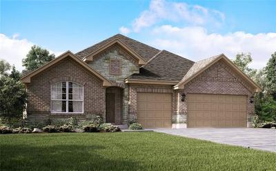 Pflugerville Single Family Home For Sale: 3416 Great Knot Pass