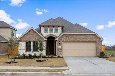 Pflugerville Single Family Home For Sale: 19321 Pilton Dr