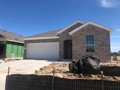 Leander Single Family Home For Sale: 1124 Capra Ln