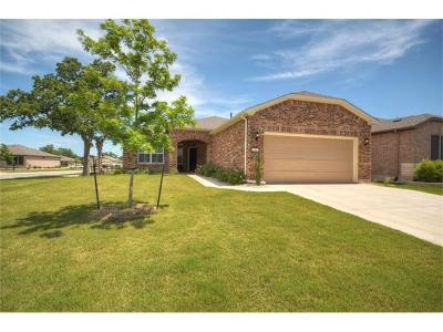 Georgetown Single Family Home Active Contingent: 101 Copperas Creek Cv