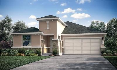 Pflugerville Single Family Home For Sale: 17213 Casanova Avenue