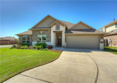 Hutto TX Single Family Home For Sale: $290,000