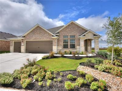 Hutto Single Family Home For Sale: 302 Hibiscus Dr