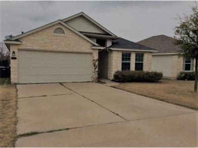 Hutto Single Family Home For Sale: 205 Watergate Way