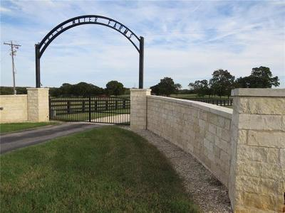 Bosque County, Bell County, Burnet County, Calhoun County, Coryell County, Lampasas County, Limestone County, Llano County, McLennan County, Mills County, Milam County, San Saba County, Williamson County, Hamilton County, Travis County, Comal County, Comanche County, Kendall County Single Family Home For Sale: 2265 S Highway 77