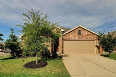 Georgetown Single Family Home For Sale: 334 Briar Park Dr