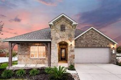 Round Rock Single Family Home For Sale: 7203 Loggia Pl