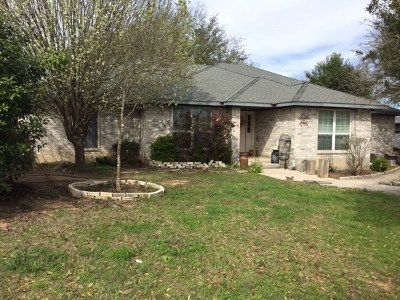 Buda, Kyle Single Family Home For Sale: 1229 N Fm 1626 #B