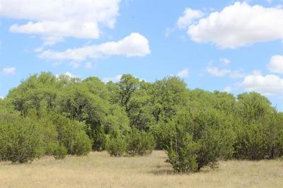 Bell County, Burnet County, Comal County, Fayette County, Hays County, Lampasas County, Lee County, Llano County, San Saba County, Travis County, Williamson County Farm For Sale: 6903-5 Cr 2001- Tract 5