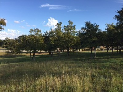 Residential Lots & Land For Sale: 129 Dovetail Ln