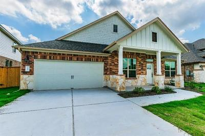 Manchaca Single Family Home For Sale: 12609 Twisted Root Dr