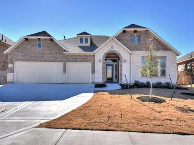 Pflugerville Single Family Home For Sale: 20308 Martin Ln