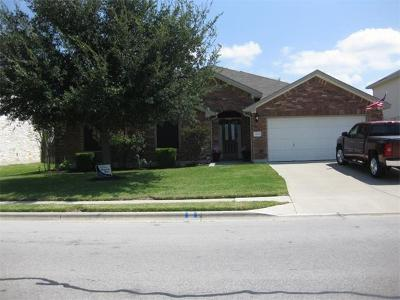 Pflugerville Single Family Home For Sale: 18805 Chrighton Castle Bnd