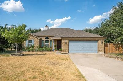 Dripping Springs Single Family Home For Sale: 10005 Longhorn Skwy