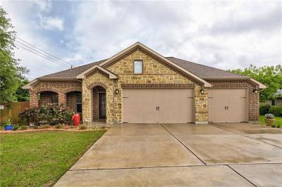 Austin Single Family Home For Sale: 13100 Villa Park Dr