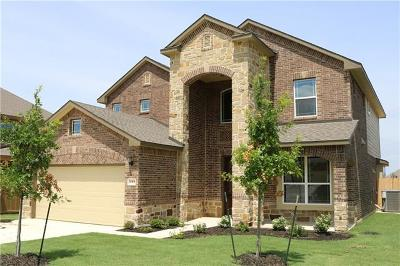 Pflugerville Single Family Home For Sale: 20408 Whimbrel Ct