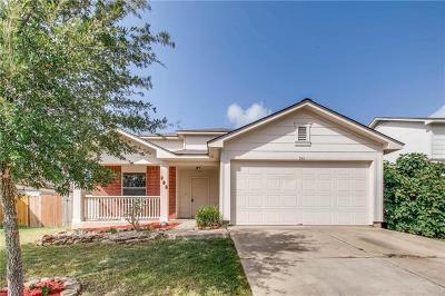 Kyle Single Family Home For Sale: 341 Enterprise