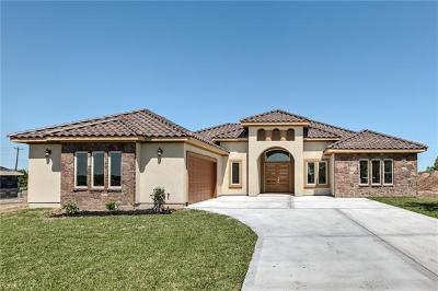 Buda, Kyle Single Family Home For Sale: 171 Peck St