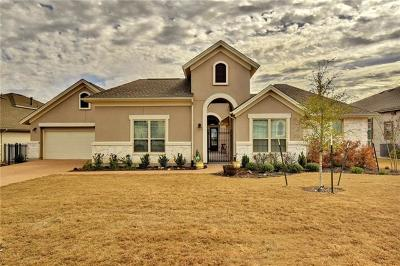 Austin Single Family Home For Sale: 328 Katie Dr