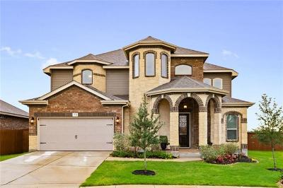 Hays County Single Family Home For Sale: 3721 Cinkapin Dr