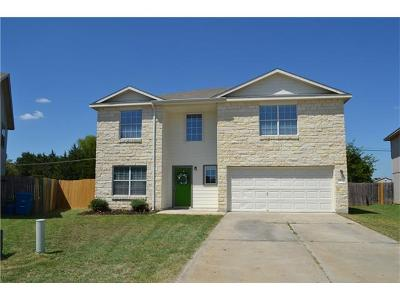 Elgin Single Family Home For Sale: 822 Lavaca Loop