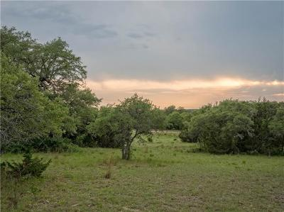 Liberty Hill Farm For Sale: Tract 3 County Road 323