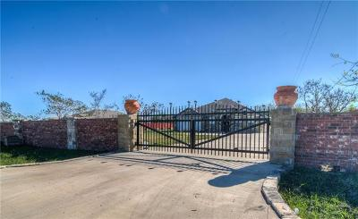 Del Valle Single Family Home For Sale: 123 Camino Del Sol