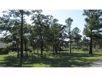 Single Family Home For Sale: 263 Mustang Dr
